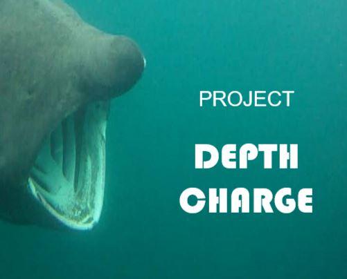 Inishowen Basking Shark Study Group